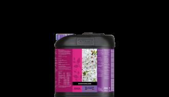 Atami B'cuzz Bloom Stimulator (Maat: 5L)