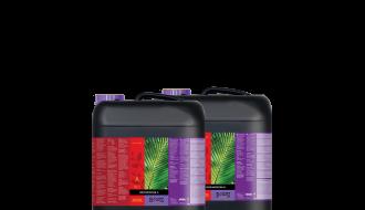 Atami B'cuzz Coco Nutrition A&B (Maat: 10L)