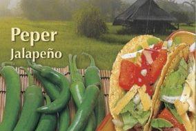 Buzzy® Xotica Peper Jalapeño
