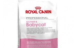 Royal Canin Mother & Babycat kattenvoer 2 kg