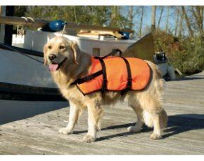 Zwem en veiligheidsvest - XS