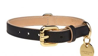 Dogatella Dogatella Klassieke Halsband zwart